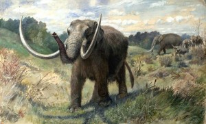 Mastodon (via Wikipedia)